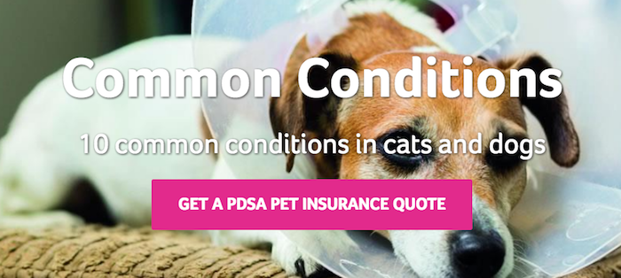 PDSA common conditions